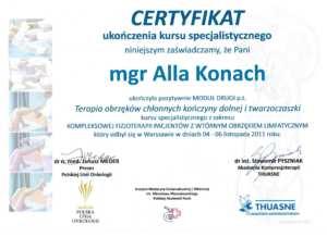 Certyfikat ALLA19